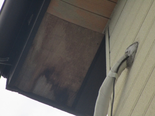 阿久比町 I様邸 外壁塗装工事 (6)